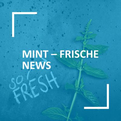 MINT-EC-Blog-MINT-FRISCHE-NEWS